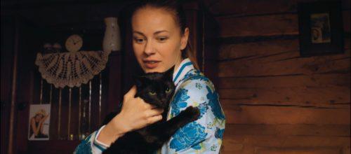 Сериал «Сельский детектив. Кошки, опасные для жизни» (2021): сюжет, содержание, чем закончится